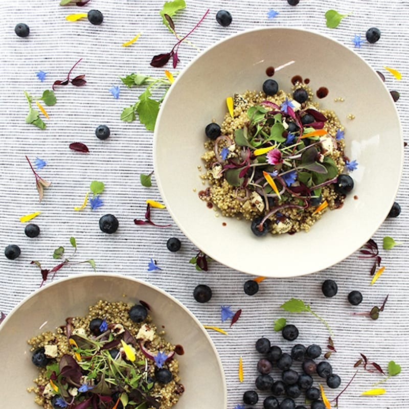 gogo-quinoa-recipe-blueberry-quinoa-salad